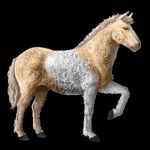 Ainos pony