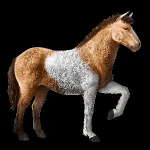 Dunajský kůň