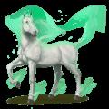 větrný kůň caicias