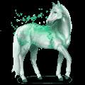 vzácný kůň smaragd
