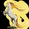 větrný kůň aeolus