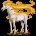 větrný kůň euronotus