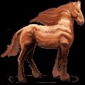 kůň ze sluneční soustavy jupiter