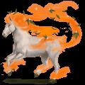 větrný kůň libonotus