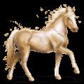 vzácný kůň perla