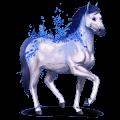 vzácný kůň safír