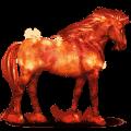 kůň ze sluneční soustavy slunce