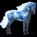 kůň ze sluneční soustavy země