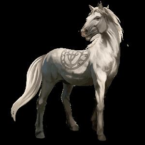 Camargský pony